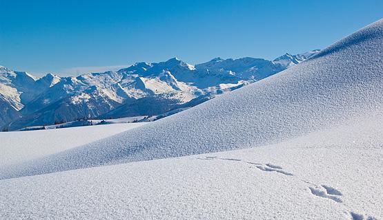 Ski-pakketten start en finale